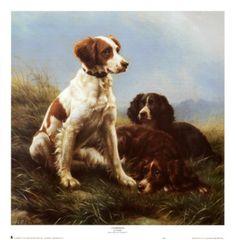 dogs Brittany Spaniel, Famous Artwork, Dog Paintings, Dog Portraits, Dog Art, Dog Love, Illustration Art, Fine Art Prints, Puppies