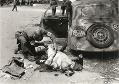A U.S. medic gives treatment to a German officer who has been shot while driving his car, Chartres, France. August 1944.