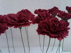 Red sugar carnations.