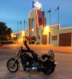 "✨Stephanie Pietz✨ on Instagram: ""My journey begins here.... #neworleansbound #downtownfortworth #hdlowrider #dyna #harleydavidson #simpsonhelmets #metalmulisha #metalmulishamaidens #flygirl #flygirlseyewear #flyfamily #maidenswhoride #texas #easyrider #eaglerider"""