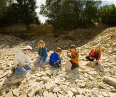 Hier findest du die größte Karte vieler Fossilien-Sammelstellen in Deutschland. Dazu gibt`s Tipps und Hinweise, was du beim Steine klopfen beachten mußt!