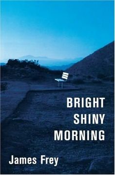 ONE OF MY ALL TIME FAVS! Bright Shiny Morning - James Frey