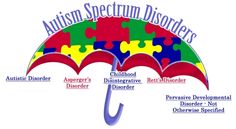 I get this question all of the time! Or I get the person that doesn't understand there are other things listed under the autism spectrum.