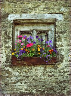 """English Window Box"" by SdosRemedios on Flickr - An English Window Box"