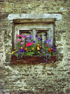 English Window Box