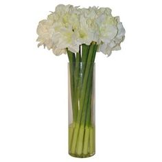 """Check out this item at One Kings Lane! 31"""" Amaryllis in Cylinder Vase, Faux"""
