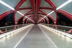 peace bridge #PatrickBorgenMD
