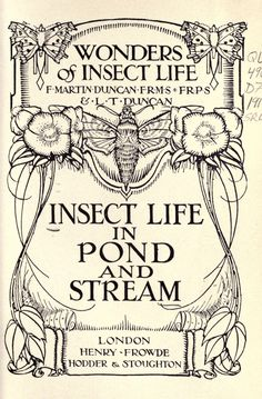 Insect life in pond and stream  F. Martin Duncan and L. T. Duncan. Published 1917 by Henry, Frowde, Hodder & Stoughton in London .