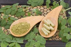 Studie zeigt: Moringa oleifera wirkt deutlich entzündungshemmend