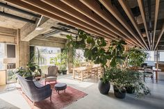 in central tokyo, local firm general design has completed a plant-filled office for 'every day is the day', a creative agency.