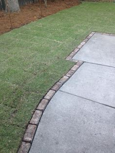 Laid new sod - Zoysia - ideal for our shady back yard. Added bring trim to existing concrete walkway - really dressed it up!