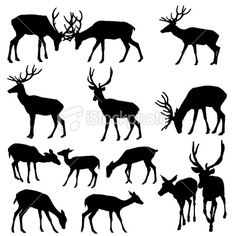 Deer Silhouette Royalty Free Stock Vector Art Illustration