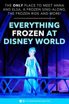 Where is the one place to meet Elsa and Anna at Disney World? There's actually a Frozen sing-along where we can sing at the top of our lungs with hundreds of other Frozen fans?! I need to know more about that Disney World Frozen ride! We're talking all things Frozen at Disney World in this post. #frozen2 #frozen #disneyworld #frozenatdisneyworld #annaandelsa