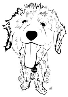 Goldendoodle Dog Pages Coloring