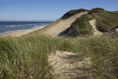 Sand Dunes, Marconi Beach, Cape Cod National Seashore, Wellfleet, Cape Cod, Massachusetts, USA