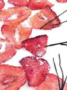Opskrift på delikate jordbær-chips med et strejf af sødme. Grapefruit, Delicious Desserts, Curry, Strawberry, Chips, Sweets, Vegetables, Recipes, Food