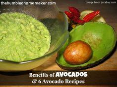 Benefits of avocados plus 6 recipes