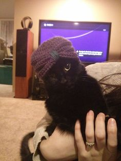 I made a tiny turban for a friend's baby, tried it out on the cat first. - Imgur