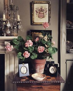 At Home With: Jack Laver Brister, Frome, Somerset :: This Is Glamorous Zuhause bei: Jack Laver Brister, Frome, Somerset :: This Is Glamorous Pink Cabinets, Velvet Wallpaper, Shabby Chic, English Decor, Interior Decorating, Interior Design, Decorating Ideas, Cottage Interiors, Colorful Decor