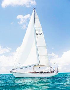WORLD TOUR STORIES - Taru and Alex sailing around the world. Sailing blog.