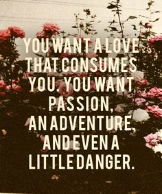 you want passion ... adventure ..  and even a little danger ...
