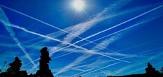 Foods & Supplements For Chemtrail Protection  The Event Chronicle