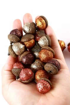 Apply glitter to acorns then put them in a jar to display during fall. Cute!!