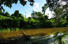 Las Mejores Fotografías del Mundo: Gran foto tour en la selva amazónica