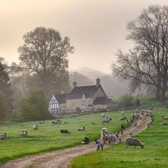 A Cottage at Aston Subedge, Gloucestershire, England . A Cottage at Aston Subedge, Gloucestershire, England . English Country Decor, Country Life, Country Roads, English Farmhouse, French Country, Beau Site, Photos Voyages, English Countryside, Farm Life