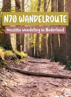 De wandelroute: wandelen in Berg en Dal - Stripe Away Hiking Places, Places To Travel, Places To Visit, Water Activities, Outdoor Activities, Hiking Europe, Nature Adventure, Ultimate Travel, Worlds Of Fun