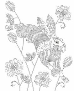 millie marotta | coloring books | pinterest | adult coloring - Advanced Coloring Pages Animals