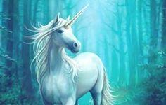 #unicorn #unicorns