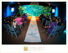 FLORIDA AQUARIUM, Tampa, FL, Limelight Photography, Wedding Photography, stepintothelimelight.com,