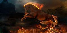 Flaming Horse Digital Art HD desktop wallpaper, Horse wallpaper, Flame wallpaper, Fire wallpaper - Digital Art no. Cavalo Wallpaper, Fire Horse, Beast, Horse Wallpaper, Hd Wallpaper, Surreal Photos, 3d Fantasy, Fire Art, Image Hd