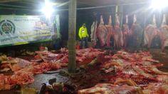 Noticias de Cúcuta: Desmantelado centro clandestino para el sacrificio...