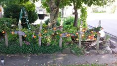 More poor man's fall decorating.  No shortage of old wood and weeds around here