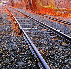 Freight Rails Thru Bucks County|Love's Photo Album