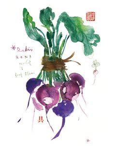 Vegetable poster, Radish print, 8X10, Botanical Purple Home decor, Art for kitchen, Food illustration, Watercolor vegetables. $25.00, via Etsy.