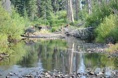 Land for sale in 160 Acres of River Frontage in the Wilderness of the Chilcotin, Itcha Ilgachuz Provincial Park, British Columbia Real Estate News, Real Estate Houses, New Property, Land For Sale, British Columbia, View Photos, Open House, Wilderness, Acre