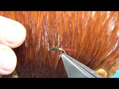Tying the Poacher WetFly with Davie McPhail - YouTube