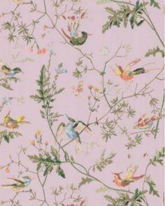 behang humming birds van Cole & Son