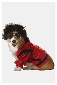 Pop King Dog Costume  #UrbanOutfitters    The wig would never stay on Willy...but we could be matching Michaels!!!