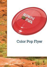 Color Pop Flyer