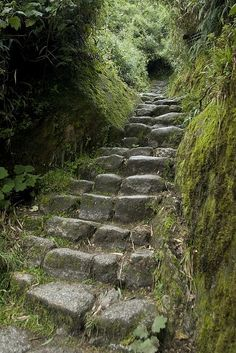 Steps on the third day of trekking.  Visit us at www.cusitravel.com