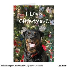 Shop Beautiful Spirit Rottweiler Christmas Card created by ZorroCreations. Types Of German Shepherd, Holiday Cards, Christmas Cards, Rottweiler Puppies, Big Dogs, Rottweilers, Dog Breeds, Dog Cat, Spirit