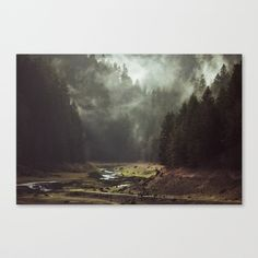 Foggy Forest Creek Canvas Print by Kevin Russ | Society6