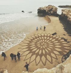 Beach flower - a wave away from disappearing - perfection to dissolution http://www.shivohamyoga.nl/ #mandala
