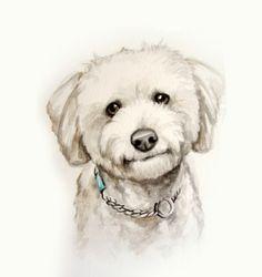 8.5x11 Watercolor custom pet portrait original by LamandaDesigns, $38.00