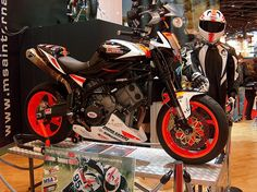 Moto Morini news, Championne du monde MotoGP - @Easy_Branches