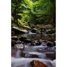 【amenoiro】さんのInstagramをピンしています。 《沢の中 #渓流#沢#自然#水辺#川#渓谷#水流#流れ#nature#森林#緑#石#愛知#愛知県#写真好きな人と繋がりたい#ファインダー越しの私の世界#一眼#PENTAX#光と影#光#影#風光明媚#色彩#instagood#長時間露光#スローシャッター#風景#風景写真#木》